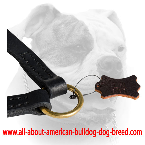 Leather leash coupler with brass O-ring
