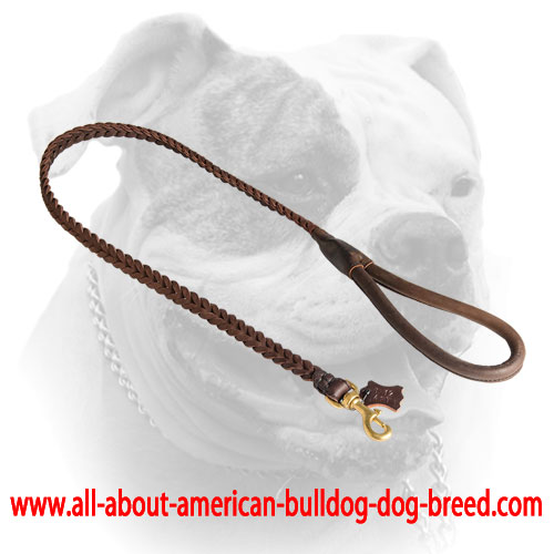 Comfy handle for leather braided American Bulldog leash