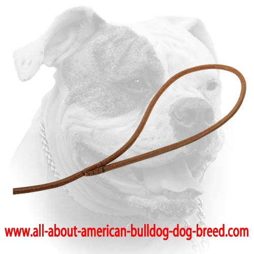 Soft comfy handle for narrow leather American Bulldog leash