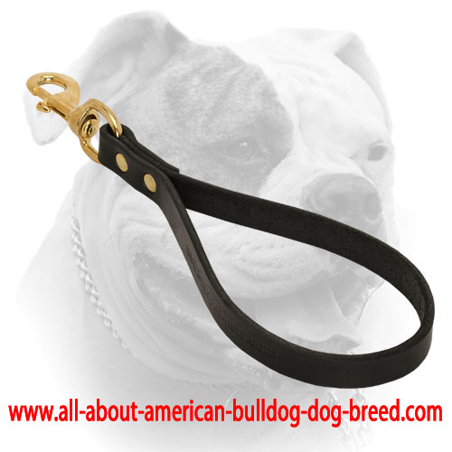 Leather American Bulldog leash with brass snap hook and rivets