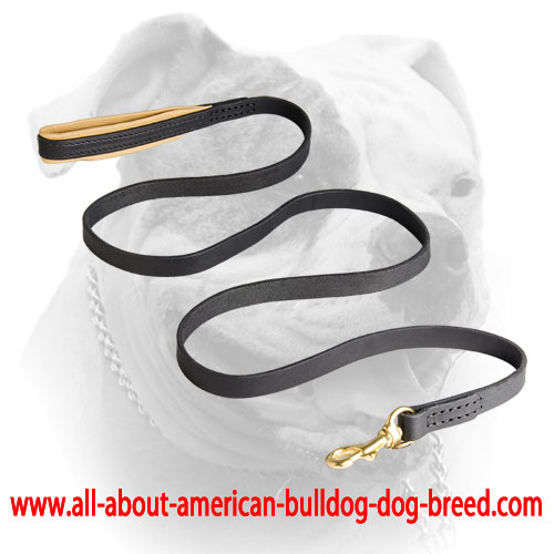 Durable genuine leather leash for American Bulldog