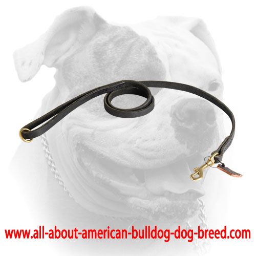 Stitched American Bulldog leather leash with brass O-ring and snap hook