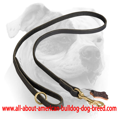 Extra O-ring on a handle for leather American Bulldog leash