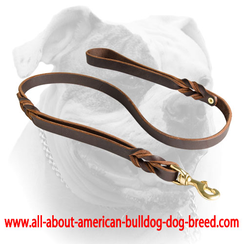 Reliable brass hardware for American Bulldog leather leash