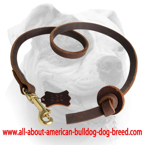 Durable American Bulldog leash with leather stopper at the end