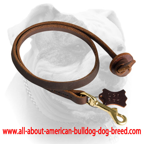 Soft reliable leather leash for American Bulldog