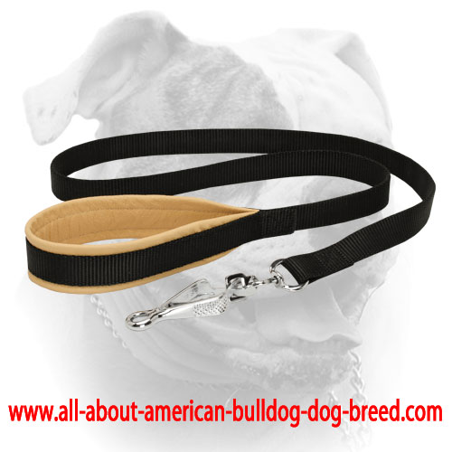 Nappa padded handle and nickel plated scissors type snap hook for nylon American Bulldog leash