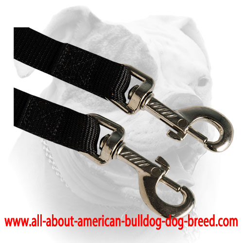Nylon leash coupler with reliable nickel snap hooks for American Bulldog
