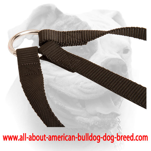 Nylon coupler with O-ring for attaching a leash for American Bulldog
