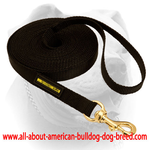 Durable walking American Bulldog nylon leash