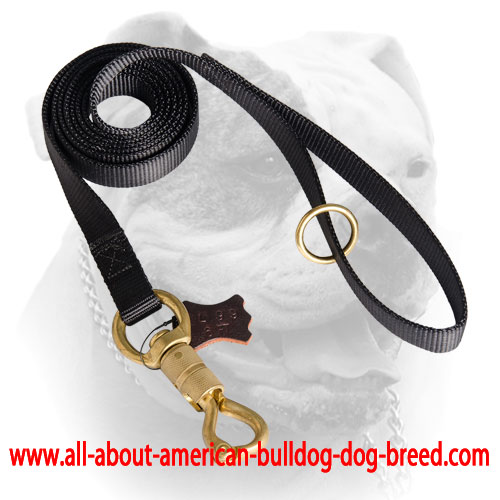 Nylon American Bulldog leash with floating O-ring on the handle