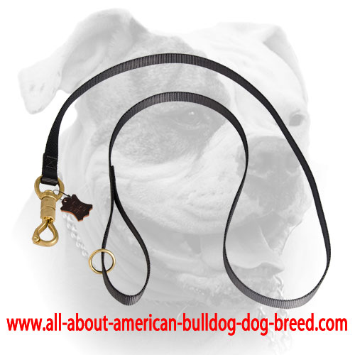 Brass smart lock for nylon American Bulldog leash