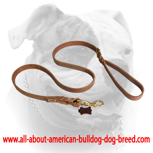 Short braids and decorative stitching for leather American Bulldog leash