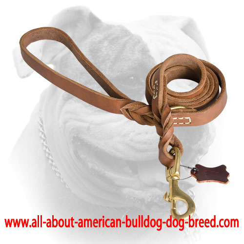 Stitched American Bulldog leash with brass snap hook