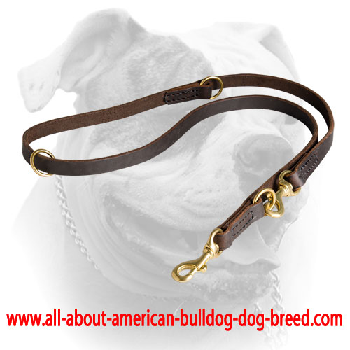 Leather American Bulldog leash with durable double stitching