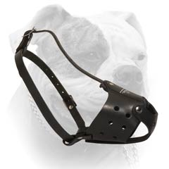 American Bulldog Everyday Leather Muzzle