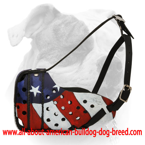 Handpainted American Pride leather muzzle for American Bulldog