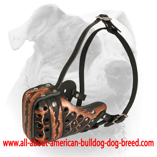 Durable steel front bar for leather American Bulldog muzzle