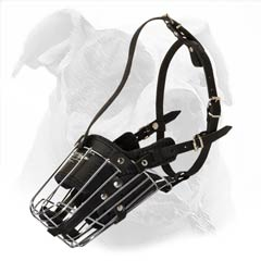 Wire cage muzzle with Protective Plate for American Bulldog