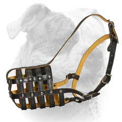 Leather Walking Muzzle For American Bulldog