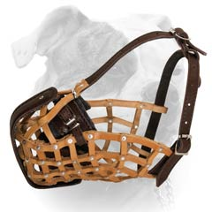 Leather Basket Muzzle For American Bulldog