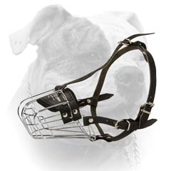 A great comfort for the dog in the muzzle
