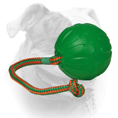 American Bulldog rubber chew ball