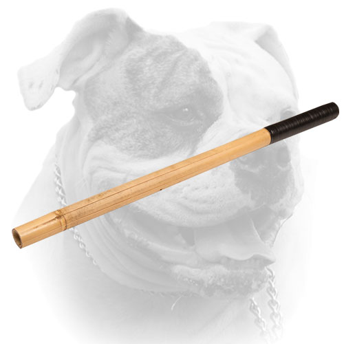 American Bulldog Bamboo stick for training