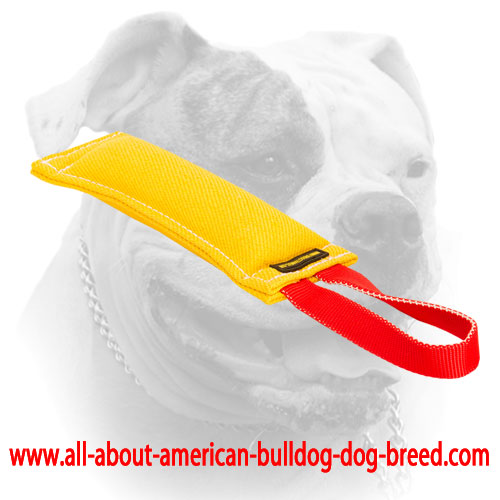 Heavy stuffed French Linen bite tug for American Bulldog