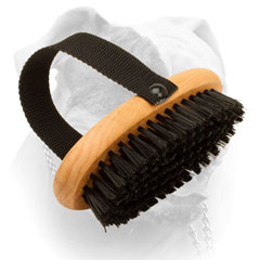 American Bulldog bristle brush for your dog's shiny fur