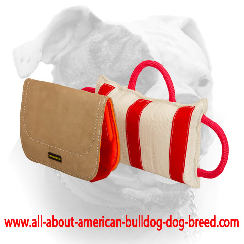 advanced american bulldog training bite pillow with leather covering