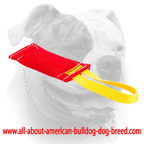 Carefully stitched American Bulldog bite tug of French Linen