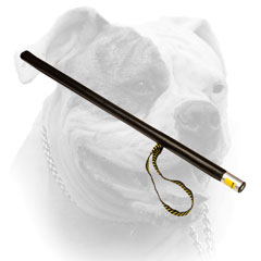 More noise American Bulldog stick with leather covering