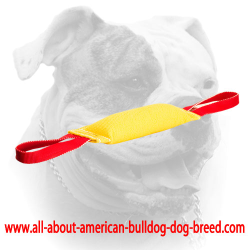 French Linen tug for American Bulldog puppy training with handles