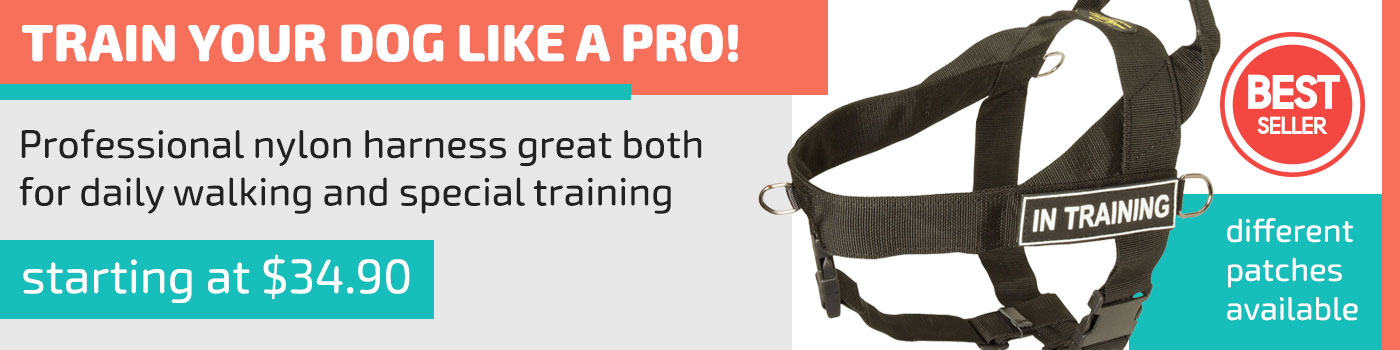 American Bulldog Nylon Harness for Professional Training