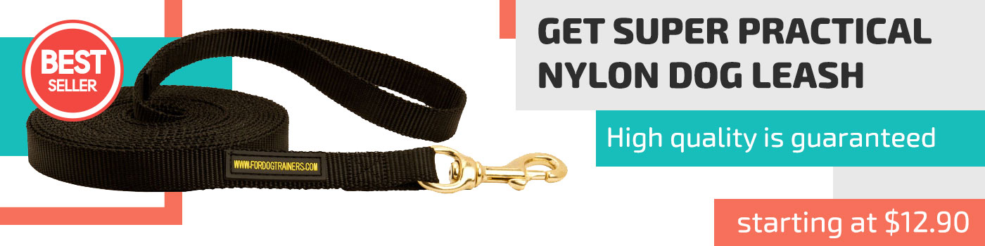 Nylon dog leash for training and tracking for American Bulldog